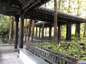 唐镇棕榈泉花园旁大面积+精装修+大花园》拎包办公