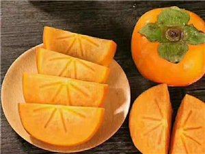 泾河阳丰甜柿子