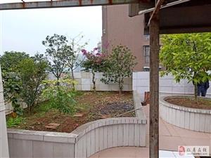 丽都滨河三期现浇房贷屋顶花园3室2厅2卫79.8万元