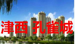 急卖武清王庆坨津西孔雀城,送院子送阁楼