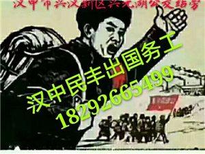 漢中出國務工日本紅酒包裝項目