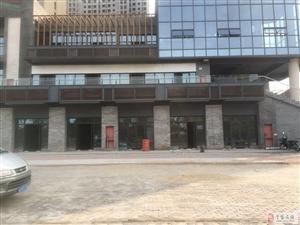 瑞泰·中央城五星街外街旺铺出租