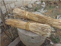 青州麦秸出售,小麦秸秆,成捆麦秸