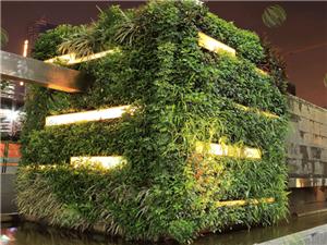 绿大师植物墙