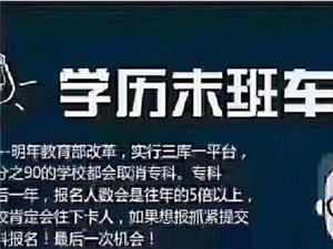 电科大、川农网络教育学习中心