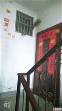 出租原霍邱县肉联厂南侧3室2厅1卫900元/月