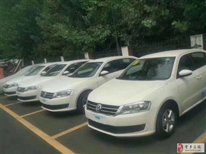 租车+自动+双燃料有车证