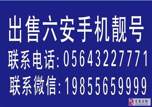 六安手机靓号批发零售19855659999(微信)