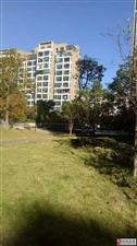 山水龙城花园洋房,98平精装黄金楼层仅售56万
