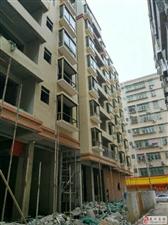 新城区东方名源酒店旁4房步梯售414720元