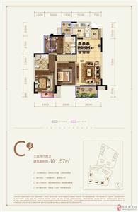 C3户型 三室两厅两卫 101.57�O