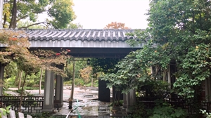 唐镇地铁站附近1室独立别墅36000元/月