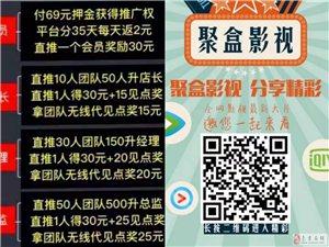 聚盒影视69元诚招网络代理
