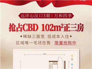 汉口火车站+CBD商务区+地段好=2地铁