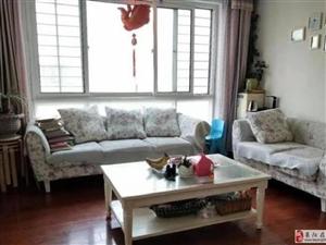 实验片鹤山小区精装婚房80平三室框架新楼客厅带东窗