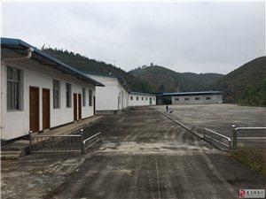 厂房出租,占地2000多平米,交通便利,基础设施完