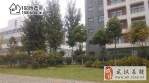 武汉常福工业园企业产权园区24亩整体出售