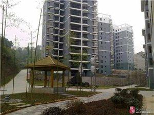 凤凰景城小区房屋出租拎包入住