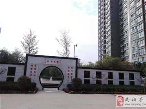 中华路(书香河畔)咸阳湖边实验学校旁两室毛坯