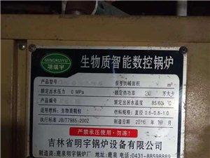 出售自动电控锅炉