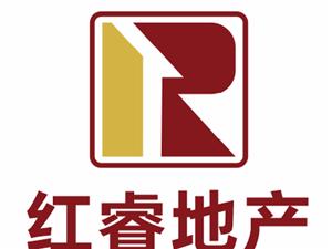 中洲物业 惠州高铁北站旁边 视野开阔 一线江景