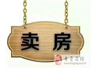 东城大海鑫庄国际东凯学区复式5室2厅3卫300万元