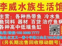 李威水族生活馆出售鱼缸热带鱼