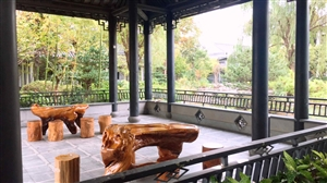 唐镇独栋别墅,整套出租,300平米,环境安逸