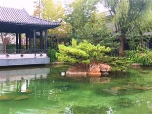 150平简装独栋别墅金融卡园靠近银行张江金桥附近