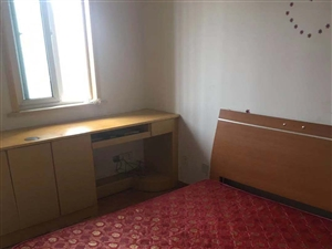 天印大道地铁站广博苑小区1室1厅1卫精装单室