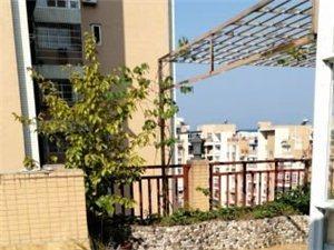 红光佳苑电梯小高层楼中楼带花园精装4室仅91.8万