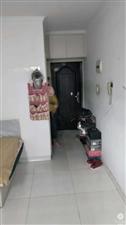 24213怡海新村1室1厅1卫21.5万元