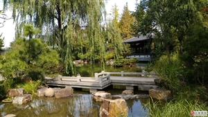 唐镇园林式园区独栋别墅出租一小面积办公室出租