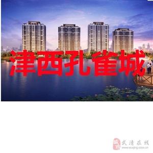 急卖王庆坨观景房津西孔雀城楼盘,送院子送阁楼