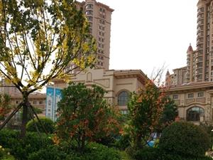中南世纪城8楼东户3室2厅1卫简装兴安学区房