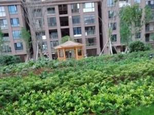 滨江一号新小区带大院子正宗四房