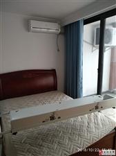 中南国际汇个人整租1室1厅1卫2200元/月