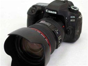 專業-照相-攝影
