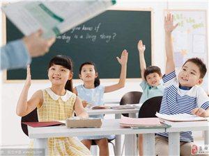 小学生晚自习辅导