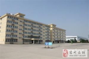 30000平米标准工业厂房整体出售