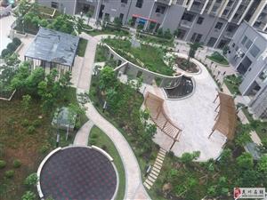 港晟豪庭3房127平方底层售78万