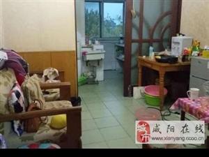 人民中路(国棉二厂小区)3室简装陕科大紧邻双气