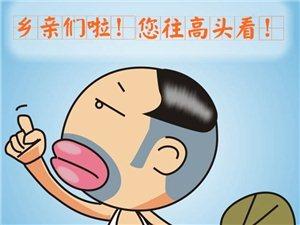 长阳汤女士现在有纯粮食喂养的猪1头出售!