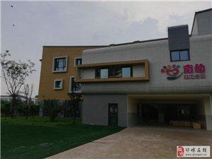 蒲江城南幼儿园开荒保洁