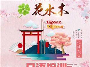 花水木日语培训