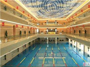 新百匯游泳館專業游泳培訓,游泳班,零基礎學游泳