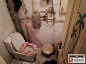 【玛雅精品推荐】长城街南小区2室2厅1250元/月