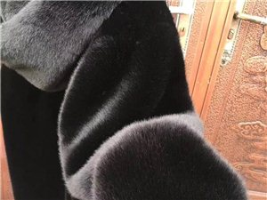 出售貂绒大衣,质量保证,价格美丽。