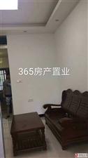 名桂首府单身公寓、精装修、全新装修、