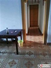 红星路简装房3室1厅1卫650元/月